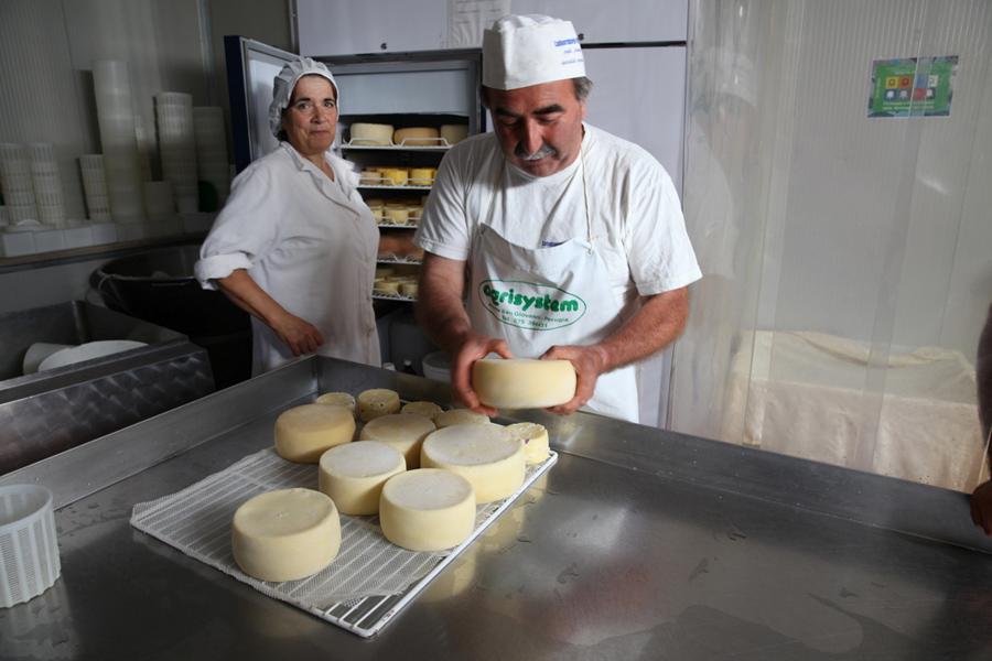 Azienda-Agricola-Fattoria-di-Opagna