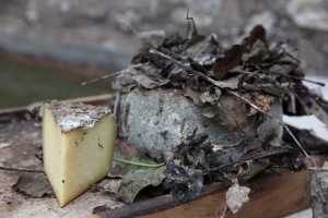 Affinamento del formaggio