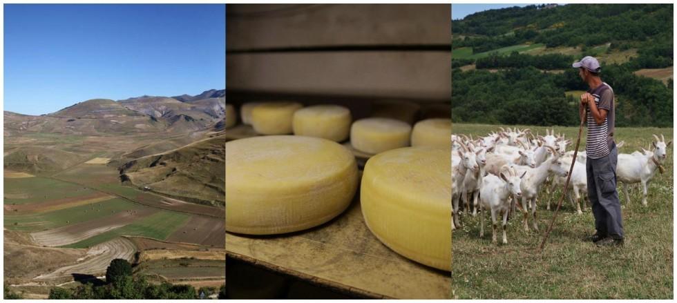 valnerina-formaggi-pastori